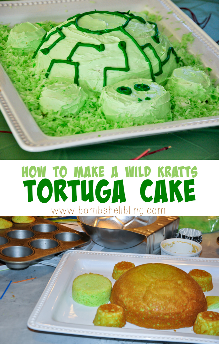 How To Make Wild Kratts Tortuga Cake