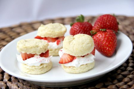 *strawberry-shortcake-14a