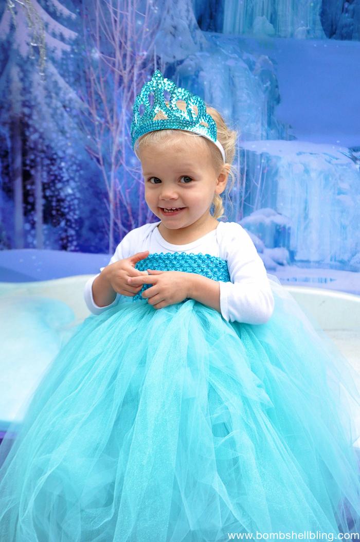 Tutu Dress Elsa Inspired Dress Amp Frozen Family Costumes